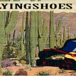 Flyin Shoes Review logo
